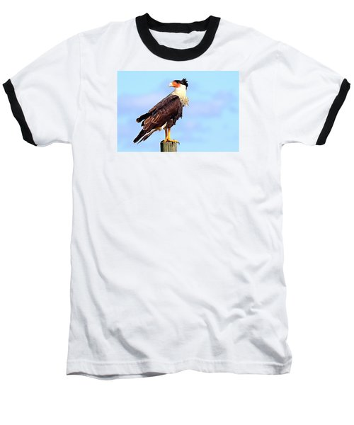 Crested Caracara Baseball T-Shirt