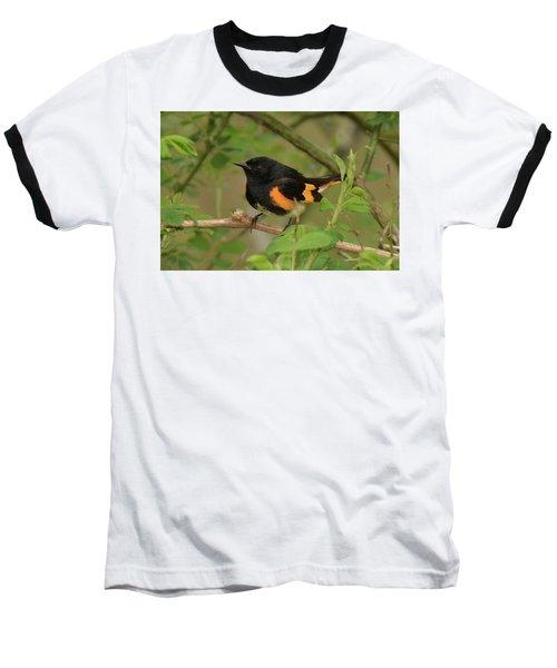 American Redstart Baseball T-Shirt by Alan Lenk