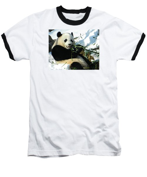 Bao Bao Sittin' In The Snow Taking A Bite Out Of Bamboo1 Baseball T-Shirt by Emmy Marie Vickers