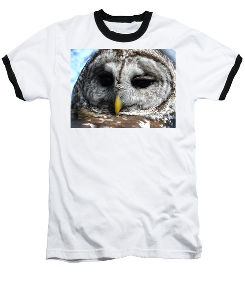 Barred Owl Baseball T-Shirt by Rebecca Overton