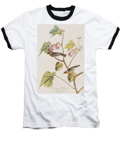 Bay Breasted Warbler Baseball T-Shirt by John James Audubon