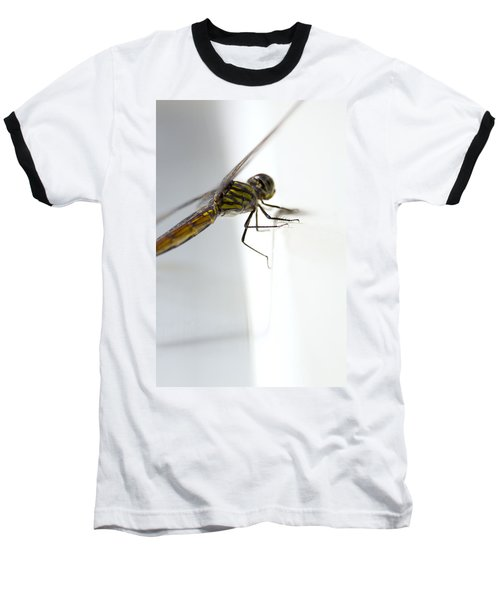 Close Up Shoot Of A Anisoptera Dragonfly Baseball T-Shirt by Ulrich Schade