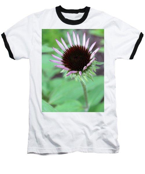 Emerging Coneflower Baseball T-Shirt