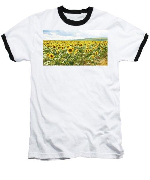 Field With Sunflowers Baseball T-Shirt