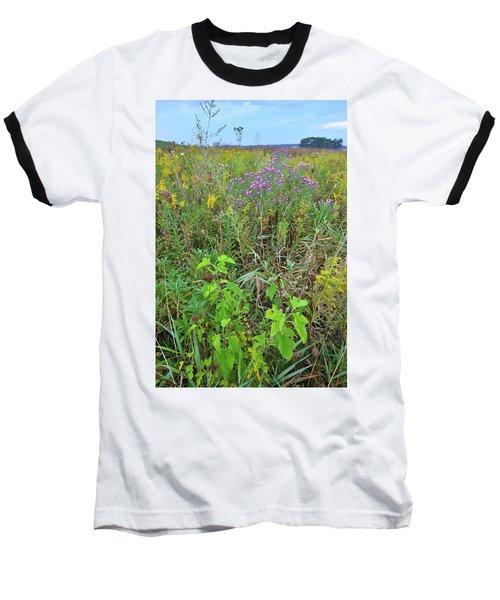 Glacial Park Native Prairie Baseball T-Shirt