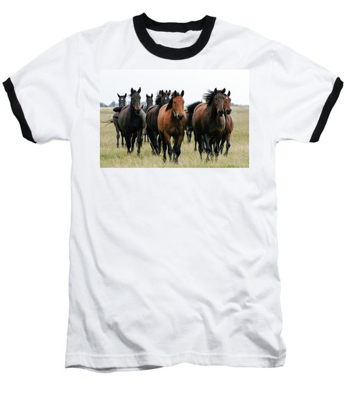 Horse Herd On The Hungarian Puszta Baseball T-Shirt