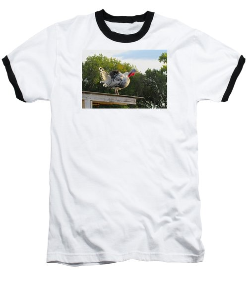 Baseball T-Shirt featuring the photograph Gobble Gobble by Brenda Pressnall