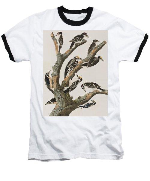 Woodpeckers Baseball T-Shirt by John James Audubon