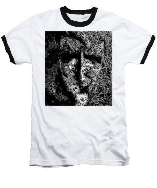 Coconut The Cat Baseball T-Shirt