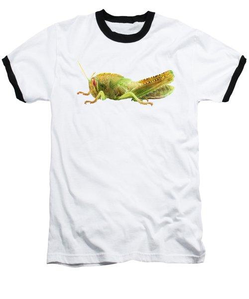 Nymph Of Egyptian Locust Species Anacridium Aegyptium Baseball T-Shirt