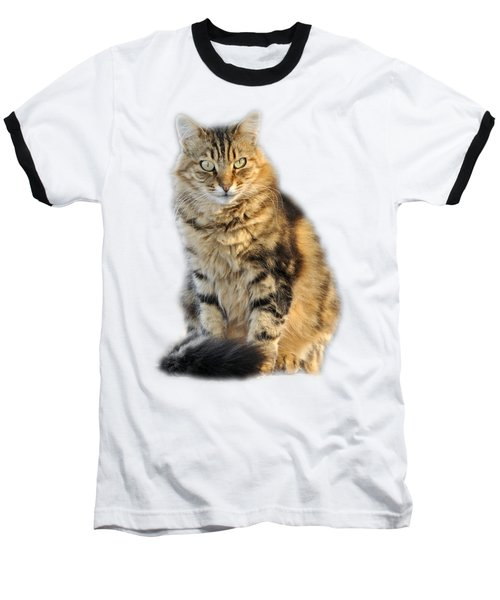 Baseball T-Shirt featuring the photograph Sitting Cat by George Atsametakis