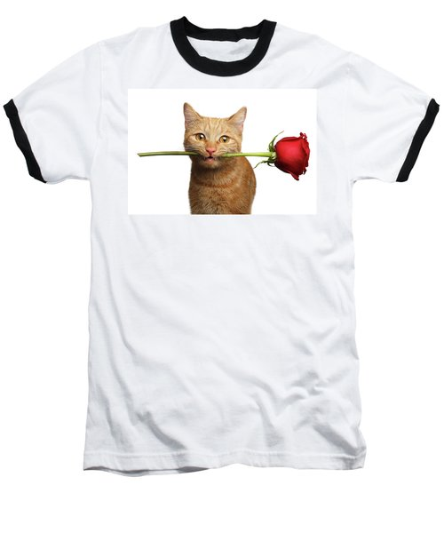 Portrait Of Ginger Cat Brought Rose As A Gift Baseball T-Shirt by Sergey Taran