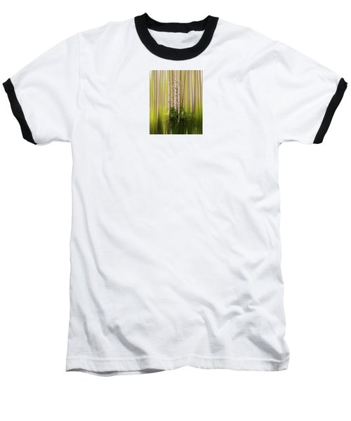 4012 Baseball T-Shirt by Peter Holme III