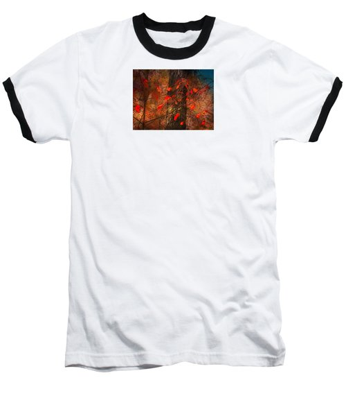 4019 Baseball T-Shirt by Peter Holme III