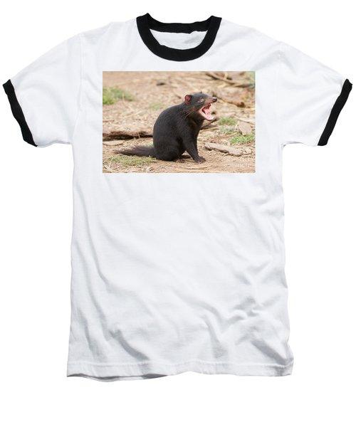 Tasmanian Devil Baseball T-Shirt by Craig Dingle
