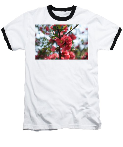 Tree Blossoms Baseball T-Shirt by Elvira Ladocki