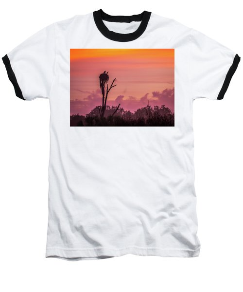 A Birdie Morning Baseball T-Shirt
