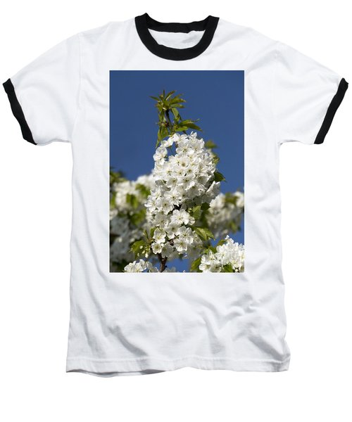 A Cluster Of Cherry Flowers Blossoming In The Springtime Baseball T-Shirt
