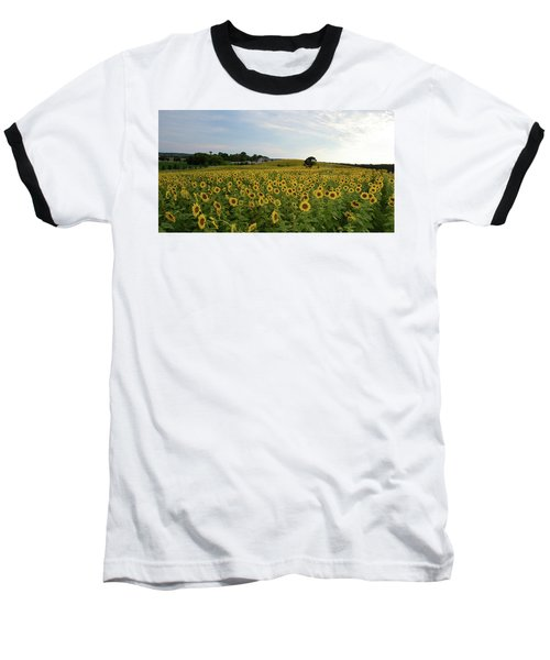 A Field Of Sunflowers Baseball T-Shirt by Janice Adomeit