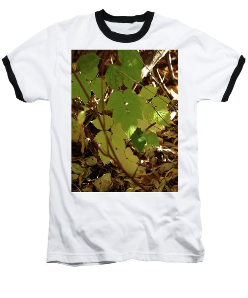 Baseball T-Shirt featuring the photograph A Plant's Various Colors Of Fall by DeeLon Merritt