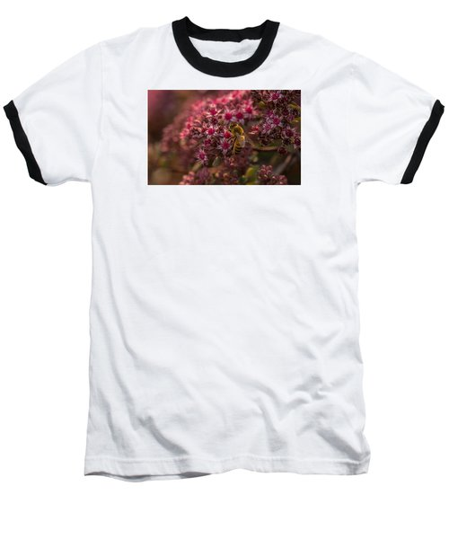 Baseball T-Shirt featuring the photograph A Summer Bee by Yeates Photography