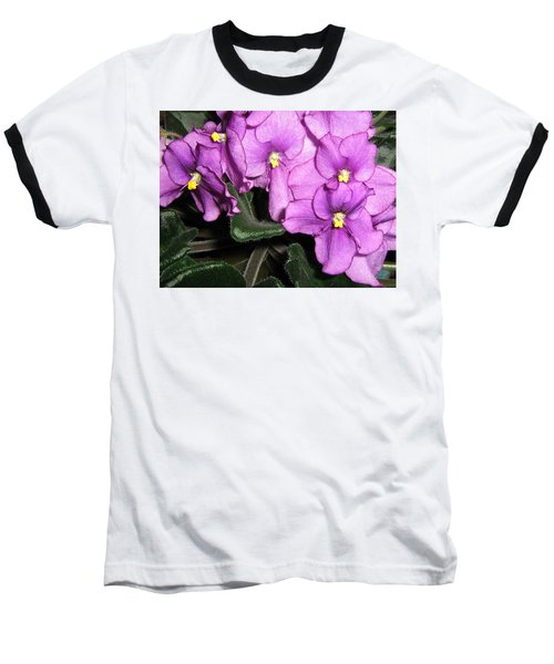 African Violets Baseball T-Shirt by Barbara Yearty