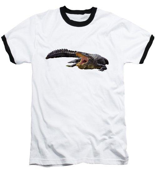 Alligator In Florida Baseball T-Shirt by Zina Stromberg