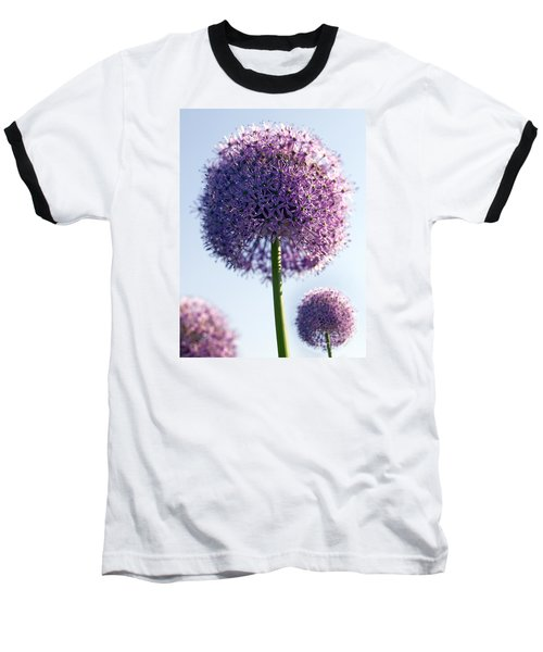 Allium Flower Baseball T-Shirt by Tony Cordoza