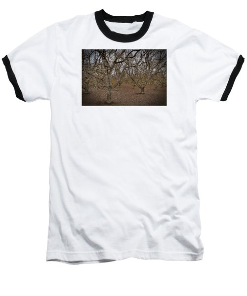 Almond Orchard Baseball T-Shirt