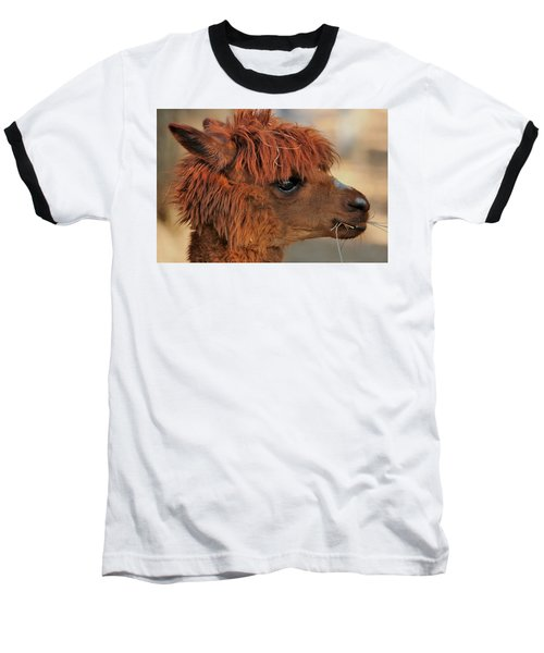 Alpaca Portrait Baseball T-Shirt