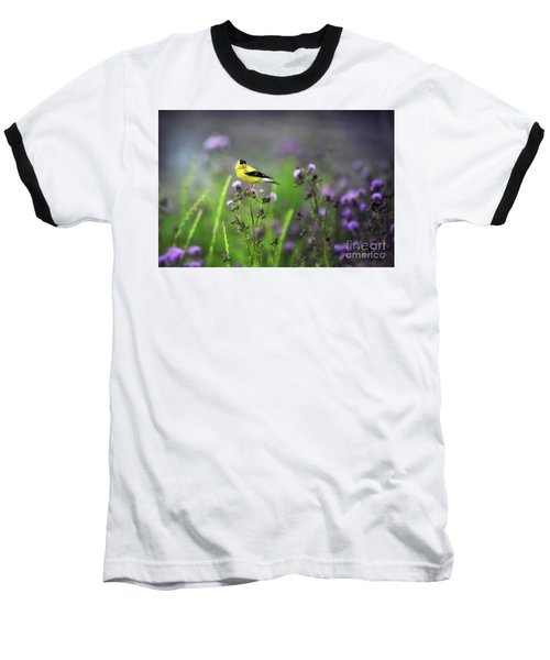 Amercian Goldfinch Baseball T-Shirt