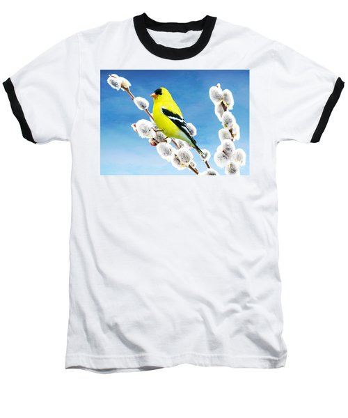 American Goldfinch Perched On Pussy Willow Baseball T-Shirt
