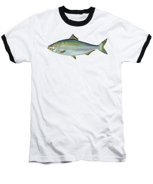 American Shad Baseball T-Shirt