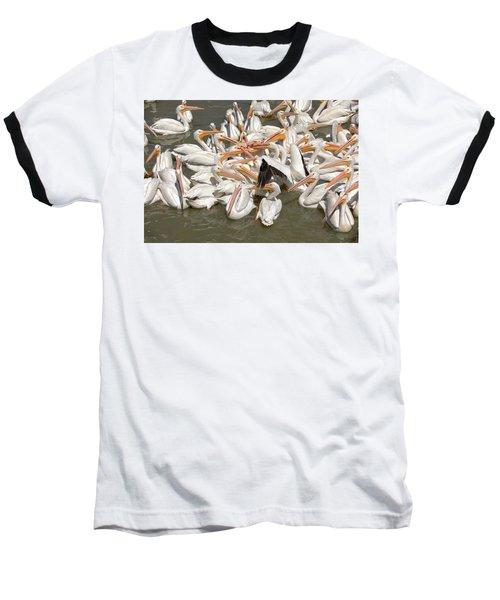 American White Pelicans Baseball T-Shirt