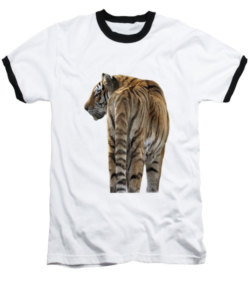 Amur Tiger On Transparent Background Baseball T-Shirt