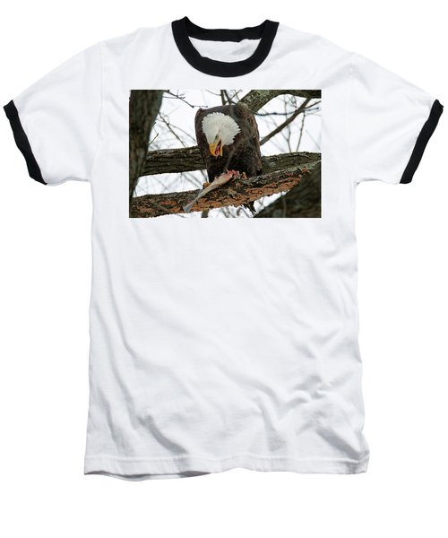 An Eagles Meal Baseball T-Shirt by Brook Burling