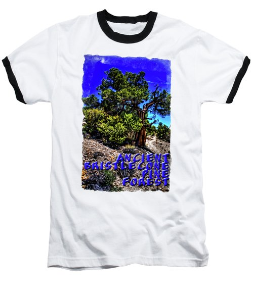 Ancient Bristlecone Pine Tree Baseball T-Shirt