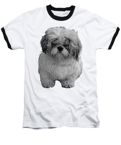 Angry Dog II Baseball T-Shirt