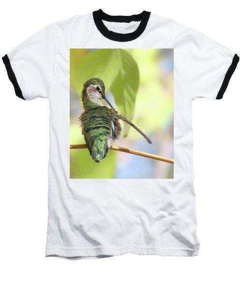 Anna's Hummingbird - Preening Baseball T-Shirt
