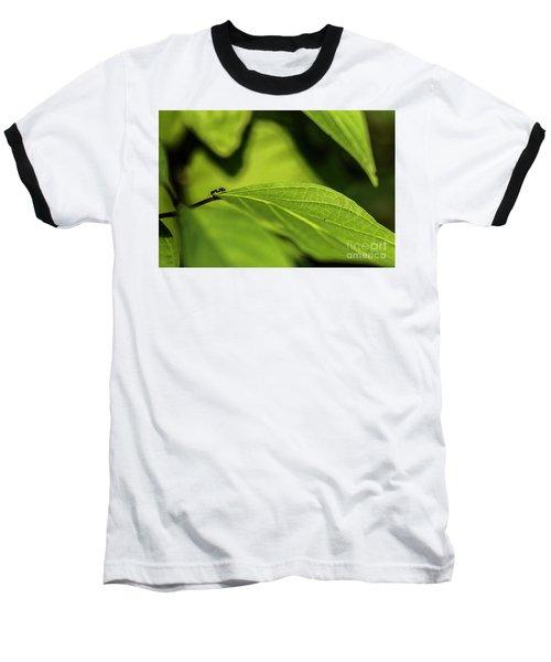Ant Life Baseball T-Shirt