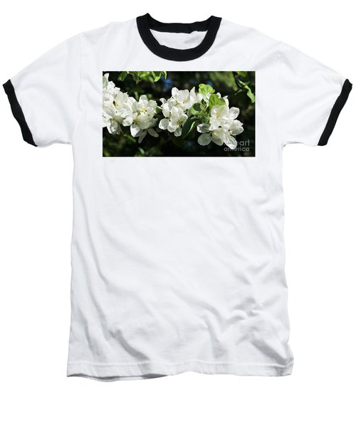 Apple Blossoms 2017 Baseball T-Shirt