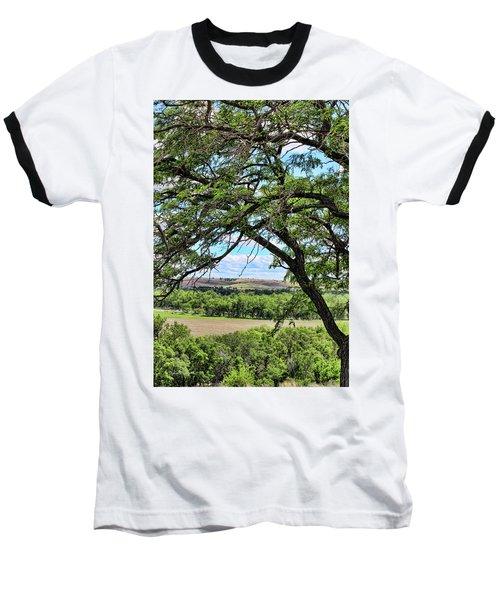 Arbor Vista Baseball T-Shirt by Sylvia Thornton