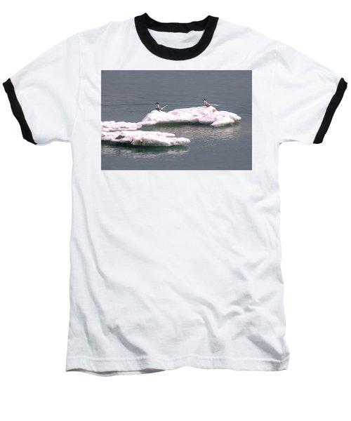 Arctic Terns On A Bergy Bit Baseball T-Shirt