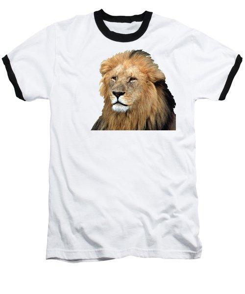 Masai Mara Lion Portrait    Baseball T-Shirt by Aidan Moran
