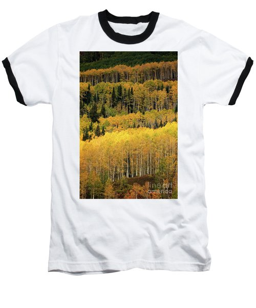 Aspen Groves Baseball T-Shirt