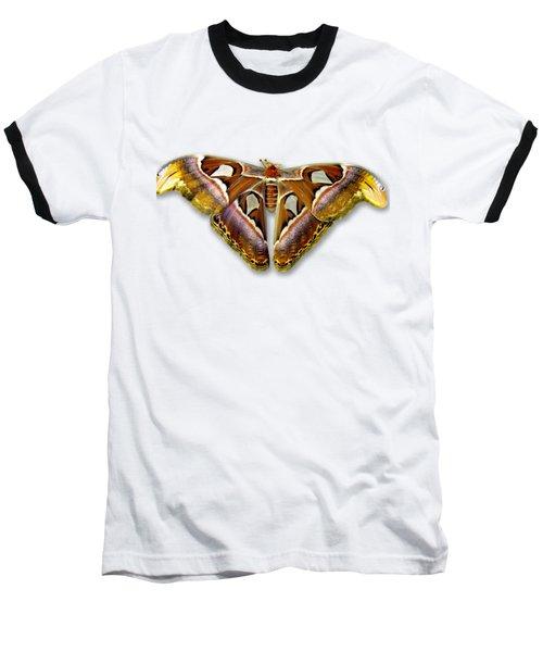 Atlas Moth 2 Sehemu Mbili Unyenyekevu Baseball T-Shirt by Bob Slitzan