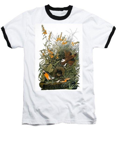 Audubon: Meadowlark Baseball T-Shirt