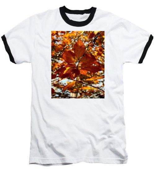 Autumn Leaves Baseball T-Shirt by Karen Harrison