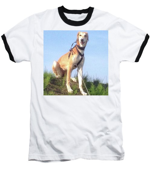 Ava-grace, Princess Of Arabia  #saluki Baseball T-Shirt