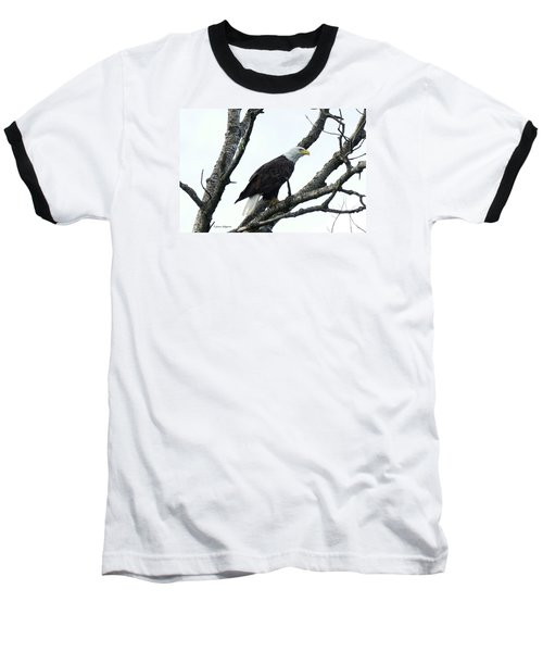 Bald Eagle 2 Baseball T-Shirt